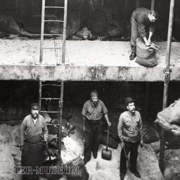 Die deutschen Salpeterfahrer und der Erste Weltkrieg